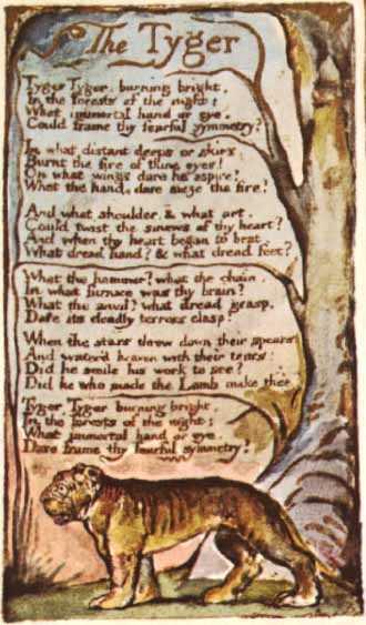 The Tyger - William Blake| kingsnews